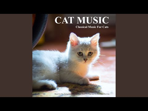 Arabesque - Debussy - Cat Music - Classical Piano Music - Music For Cats mp3