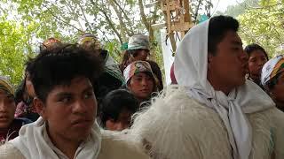 Bongo. De muy lejos los gatilleros teopisca Chiapas visita a Juquilita