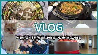 [밥상 브이로그]오겹살/국제통닭/밀푀유나베/불고기/양배…