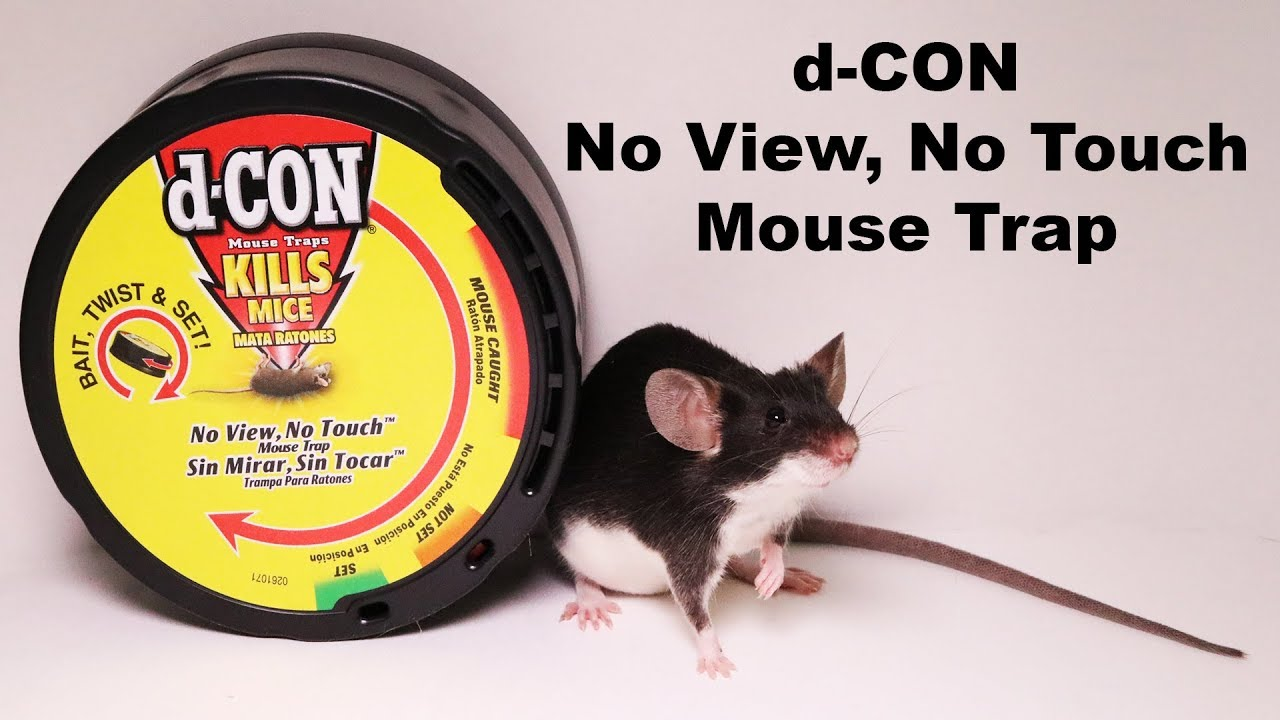 d-con-no-view-no-touch-covered-mouse-trap-mousetrap-monday