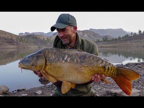 The Perfect Carping Holiday - Carp Fishing Vlog February 2020