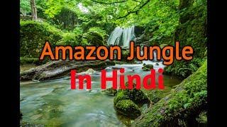 The Amazon rainforest  Amazon Jungle Documentary  Amazon Jungle Beautiful And Dangerous In Hindi