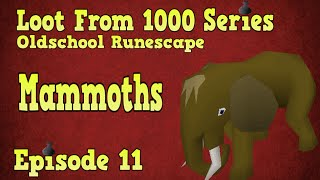 Oldschool Runescape - Loot From 1000 Series - Episode 11 [Mammoths]