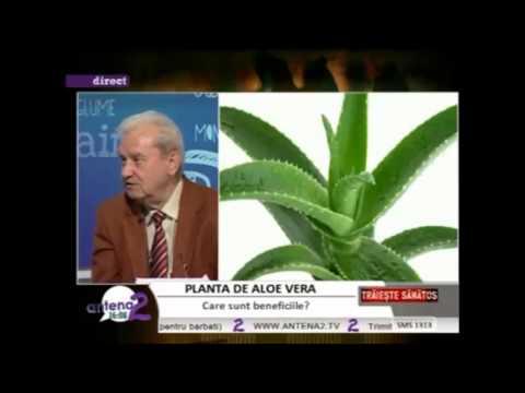 Ce beneficii miraculoase contine Gelul de baut Aloe Vera ?
