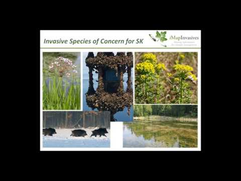 iMapInvasives  Connecting Citizen Scientists, Researchers,   Land Managers in Saska