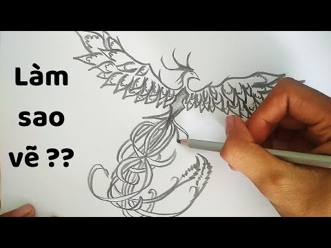 Vẽ Chim Phượng Hoàng bằng bút chì – How to draw a Phoenix