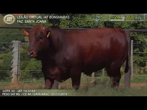 LOTE 030