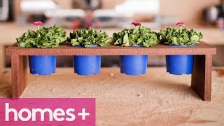 Scott Cam Diy: Potted Plant Stand - Homes+
