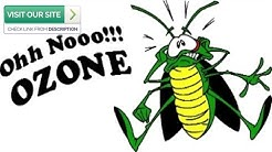 Effective Scorpion Control Paradise Valley AZ 2019 (480-493-5028) Ozone Pest Control