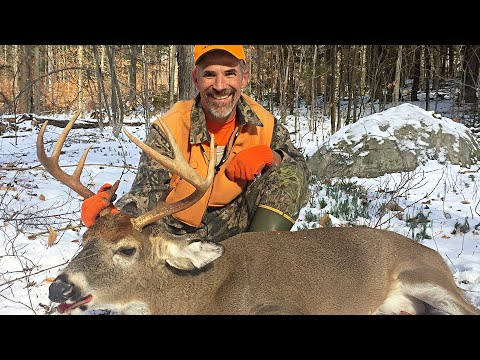 ANOTHER VERMONT BEAUTY! (Deer Hunting In New England 2016)