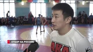 Лучшие борцы ДВФО вновь во Владивостоке