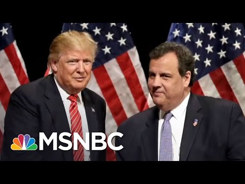 Chris Christie Questions Whether Donald Trump Protests Are Spontaneous | The 11th Hour | MSNBC