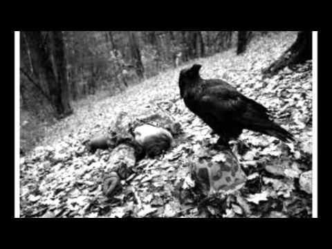 В Дорогу Птаха Скачать