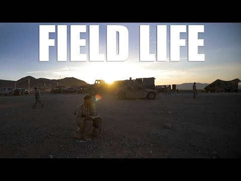 life-in-the-field