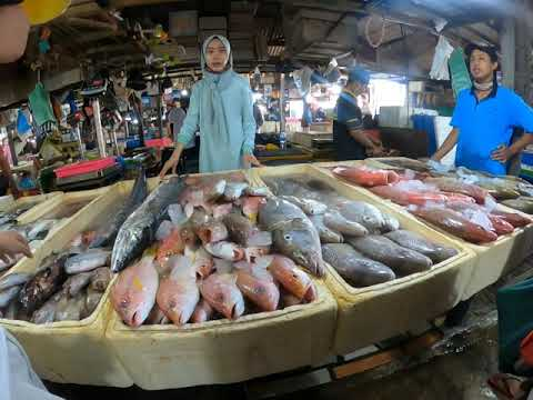 A Must See Fish Market In Bali - Kendonganan Jimbaran