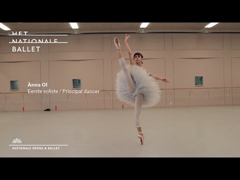New Dancers: season 2015 - 2016  - Het Nationale Ballet | Dutch National Ballet