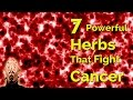 7 Powerful Herbs That Fight Cancer
