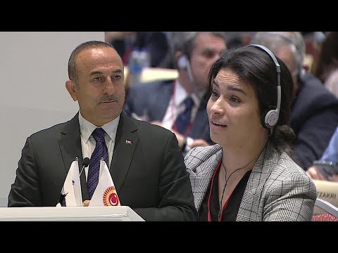 Французский депутат сбежала от турецкого министра после слов о геноциде в Алжире.