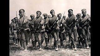 Україна у Першій світовій війні 1914-1918 роках