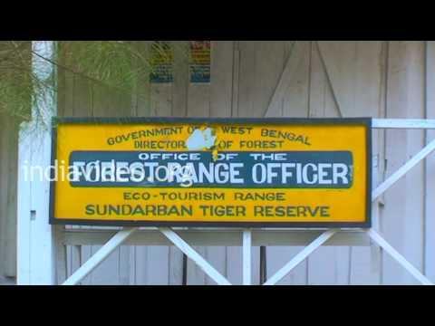 Sajnekhali Sundarban Tiger Reserve, West Bengal