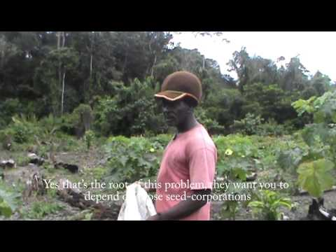 Rastafari and Organic Agriculture in Suriname