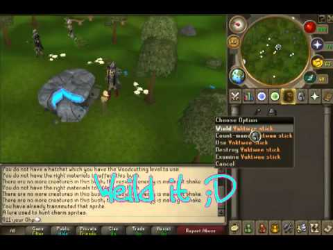 runescape hunting charm sprites amazing guide youtube