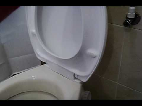 Soft Closing Toilet Seat Cover Doovi
