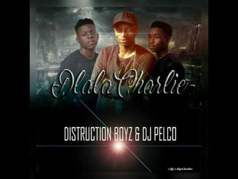 Distruction Boyz: Dlala Charlie (Pelco Touch)