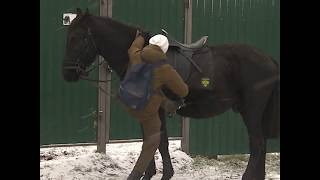 Почтальонка на лошади