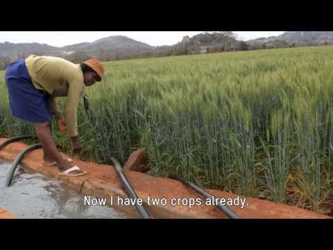 Oxfam water project sends ripples through Zimbabwean community