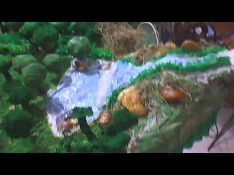 Maqueta de el bosque y la ciudad youtube for Lo espejo 0450 el bosque