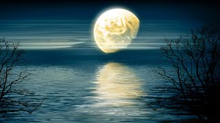 Deep Sleep Music 24/7, Insomnia, Calming Music, Sleep Music, Relaxing Music, Meditation Music, Sleep