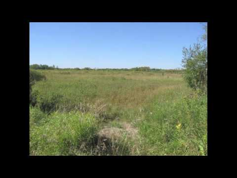Cheap Rural Land for Sale near St. Paul / Minneapolis, Minnesota (MN) FSBO