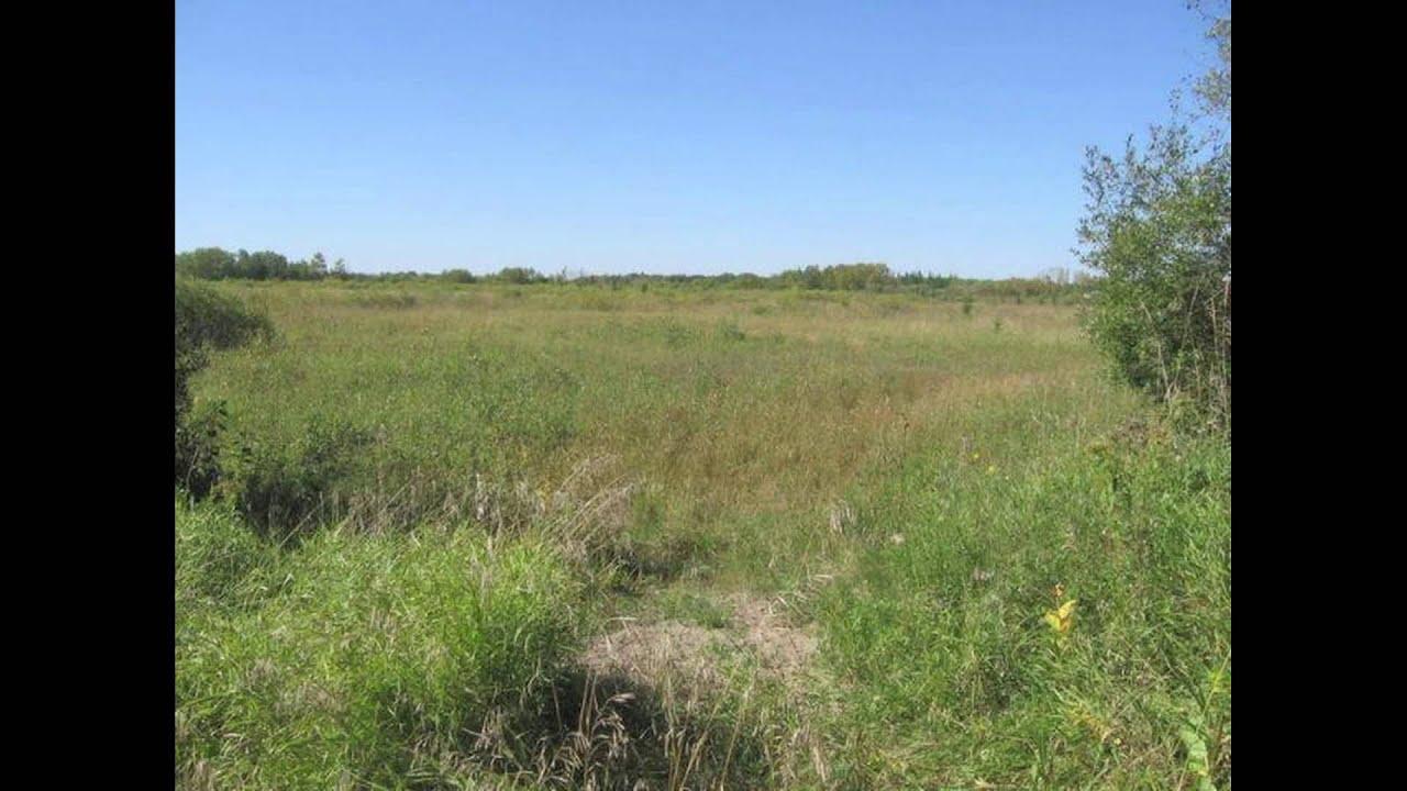 Cheap Rural Land for Sale near St  Paul / Minneapolis, Minnesota (MN) FSBO