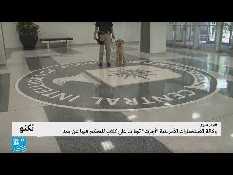 تقرير سري يكشف أن وكالة الاستخبارات الأمريكية أجرت تجارب على كلاب للتحكم فيها عن بعد  - نشر قبل 5 ساعة