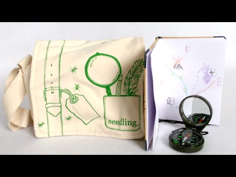 The Great Adventure Kit from Seedling