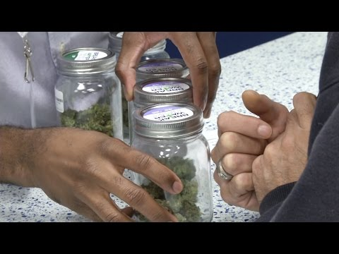 Veterans Explore Benefits of Using Medical Marijuana for PTSD