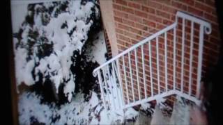 Meek Millz slips and falls down steps. Hilarious!!!! Must see!!!