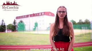 MyCzechia - Как быстро подготовить к обучение в Чехии