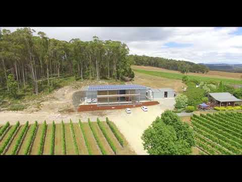 Moores Hill Winery In The Tamar Valley, Tasmania