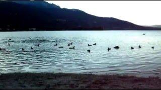 Calceranica al lago - Lago di Caldonazzo