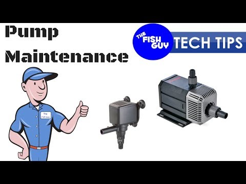 Aquarium Tech Tip #3 - Pump Maintenance