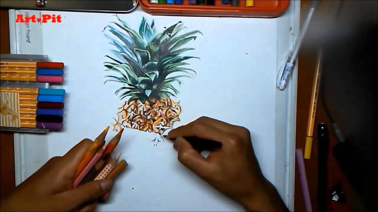 245 40 20 >> Dibujo de una piña realista ||| Drawing a realistic ...