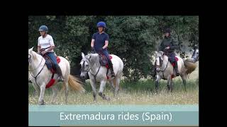 Horseback in Extremadura, Spain