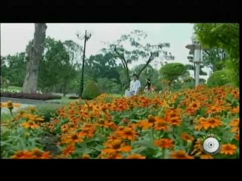 Thuy Khanh - Dau Chan Ky Niem, Rainbow Production