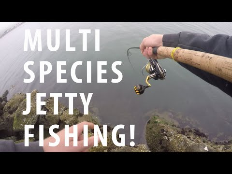 Multi Species Fishing On Slippery Rocks! ~Doran Beach Fishing Report~
