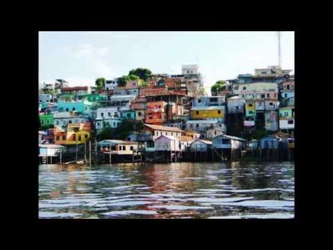 Best Tours of Manaus Brazil 2014