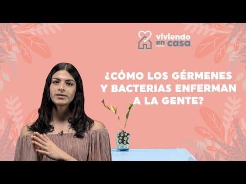 ¿Cómo los gérmenes y bacterias enferman a la gente?