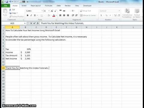 How To Calculate Your Net Income Using Microsoft Excel  Youtube
