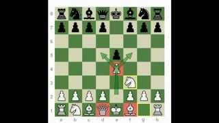 Все, что нужно знать про шахматы